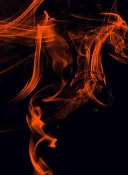 Fire Dragon by Carl E McClellan
