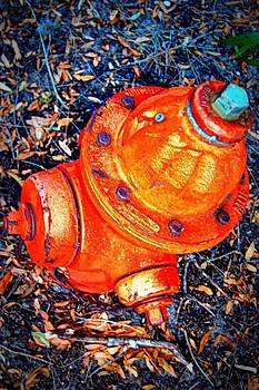 Fire Hydrant  by Heart On Sleeve ART