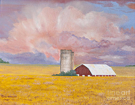 Fire in the Twilight by Terry Anderson