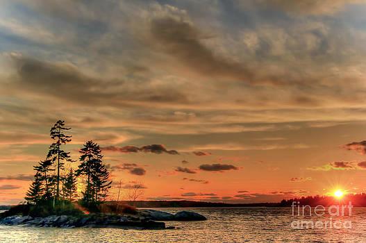 Brenda Giasson - Fire Island