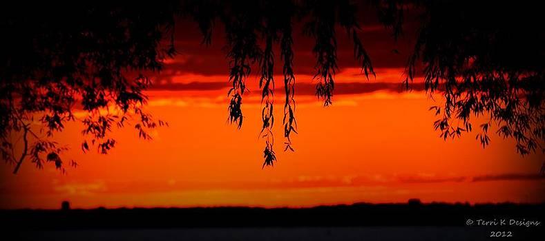 Fire Sky by Terri K Designs