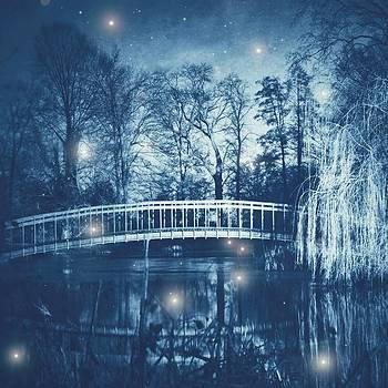 Fireflies by Danny Van den Groenendael