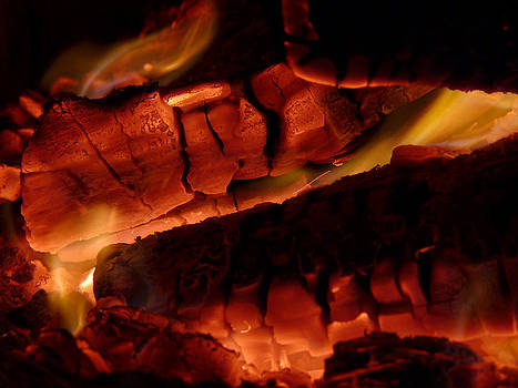 Fireplace Logs by Joseph Desmond