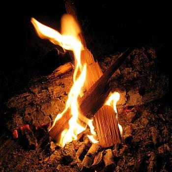 Fire's Burning by Carolyn Mortensen