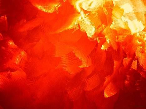 Barbara Drake - Firestorm