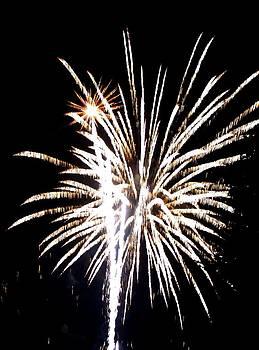 Fireworks 2 by Mark Malitz