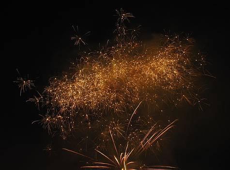 Fireworks 2012 041 by Shane Brumfield