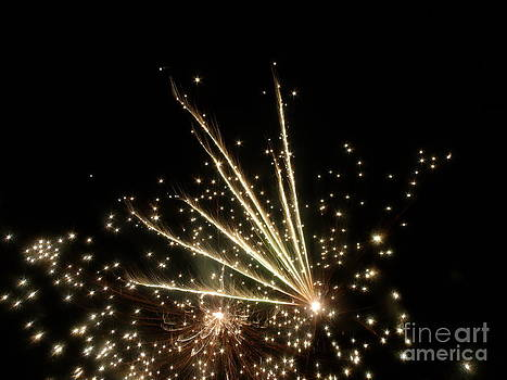 Fireworks 4 by Christy Beal