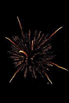 Fireworks 4 by Mark Malitz