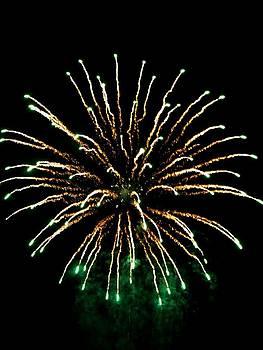 Fireworks 5 by Mark Malitz