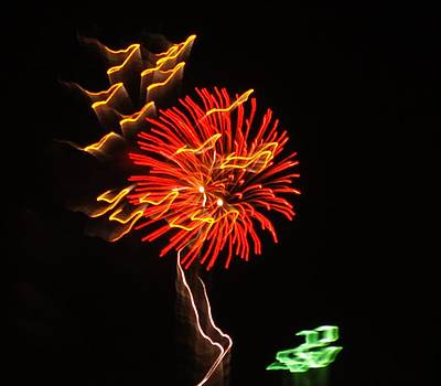 Fireworks Flower by Jean Sproul