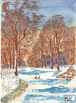 First Footprints by John Williams