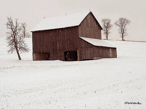 First Snow by Barry Cleveland