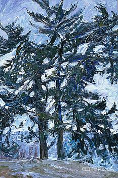 First Snowfall by Brian Mahieu