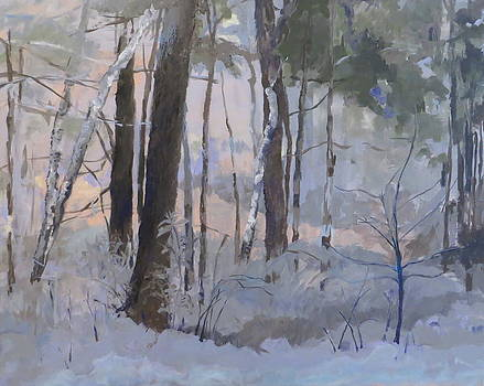 First Tracks by Terri Messinger