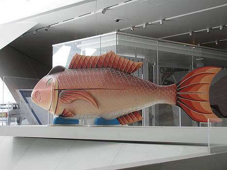 Alfred Ng - fish coffin