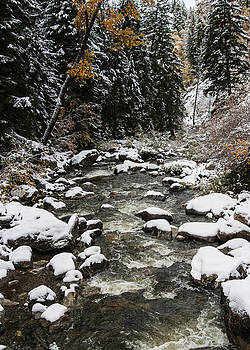 Fish Creek by Bob Bailey