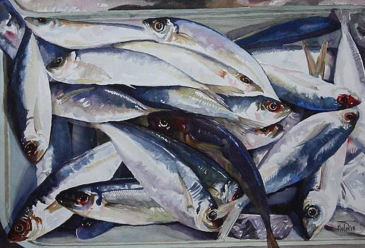 Fish by Helal Uddin