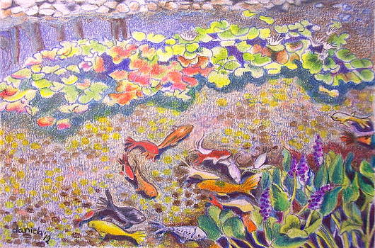 Koi pond in Charlestown by Daniela Johnson