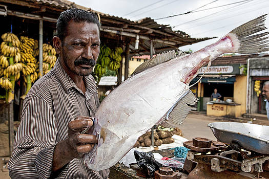 Fish Vendor by Sonny Marcyan