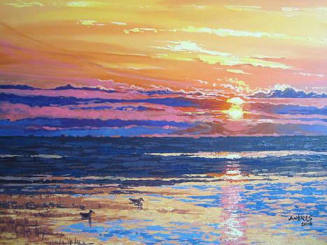 Fishing Paradise Sunset by Andrei Attila Mezei