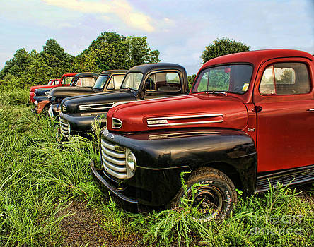 Five Fords by Julia Dressler