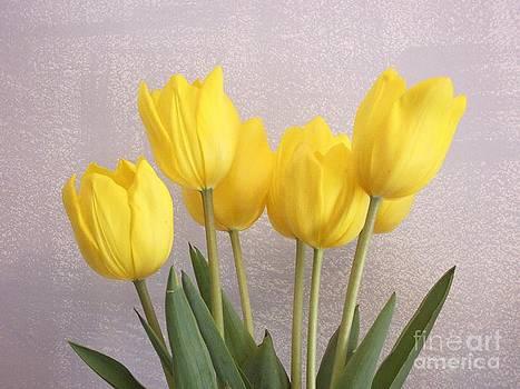 Five Yellow Tulips by Kathleen Pio