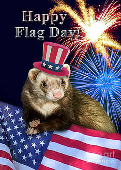 Jeanette K - Flag Day Ferret
