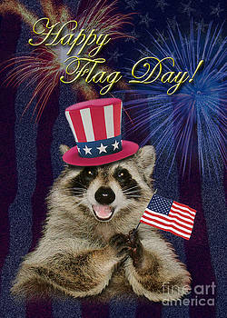 Jeanette K - Flag Day Raccoon