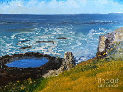 Flagstaff Point  by Pamela  Meredith