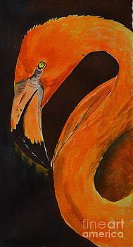 Flamingo by Betty Mulligan