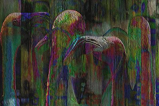 Jack Zulli - Flamingos