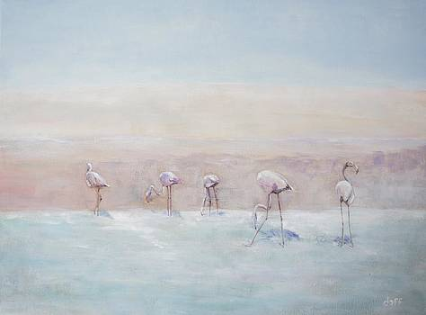 Flamingos Peru by David  Hawkins