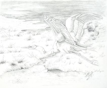Flight of Grace by Joette Snyder