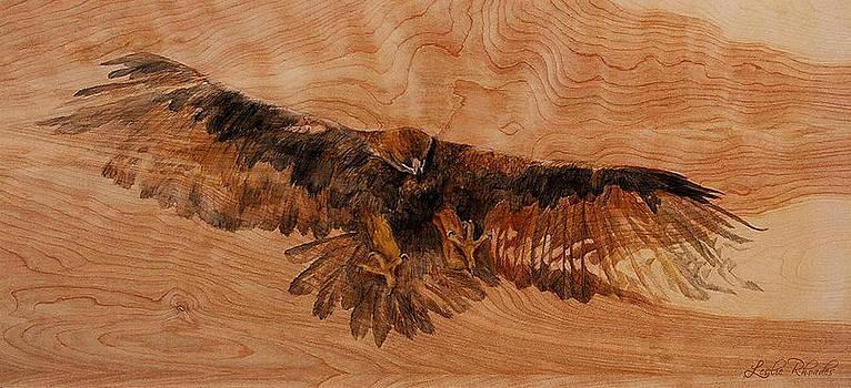 Flight Patterns by Leslie Rhoades