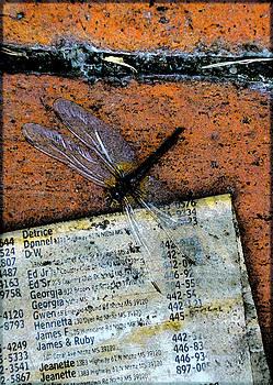 FlightPage by Leon Hollins III