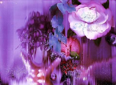 Anne-elizabeth Whiteway - Fling of Flying Colors