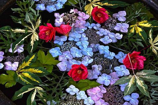 Byron Varvarigos - Floating Summer Bouquet