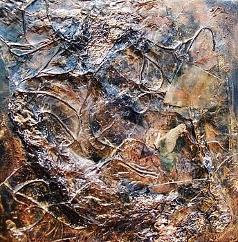Flood Residue by Ginger Lovellette