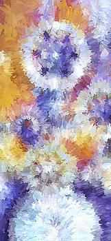 Steve Ohlsen - Floral Abstract