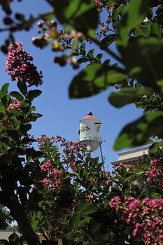 Floral Draped Teapot Water Tower by Tim Ai