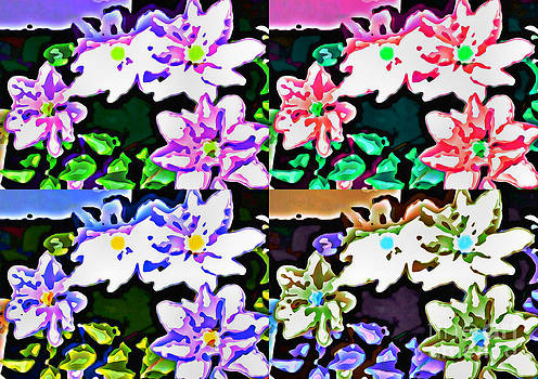 Floral Splendor  by Judy Palkimas