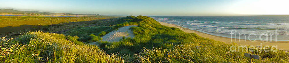 Gregory Dyer - Florence Oregon - Siuslaw Dunes - Panorama
