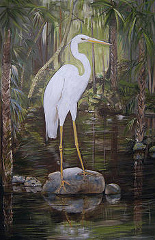 Florida Bird by Arlen Avernian Thorensen