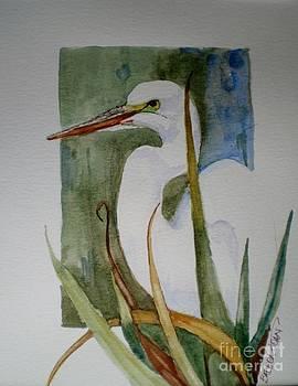 Florida Egret by Barbra Joan