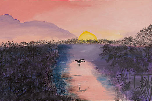 Florida Everglades by Margaret Pappas