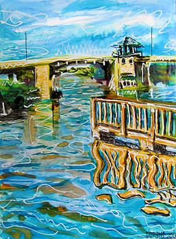 Florida Intercoastal waterway by Douglas Durand