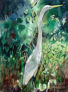 Florida Keys by David Ignaszewski