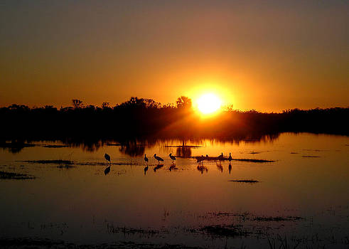 Jeanette K - Florida Sunset