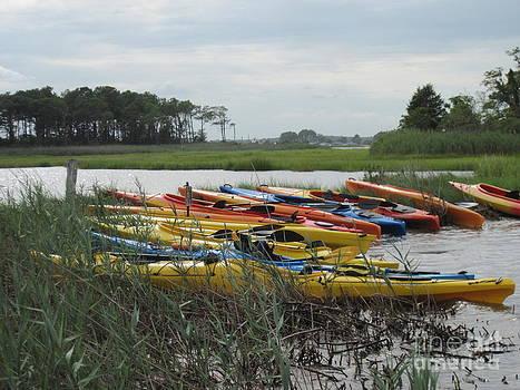 Flotilla by Donna Cavender